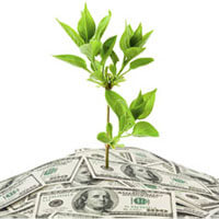 Tree growing out of dollar bills, Fishbowl Inventory Blog
