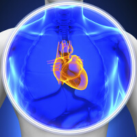 Medical devices are used to spot irregularities in the heart and treat them, Fishbowl Blog